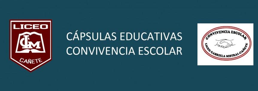 banner capsulas educativas noticia